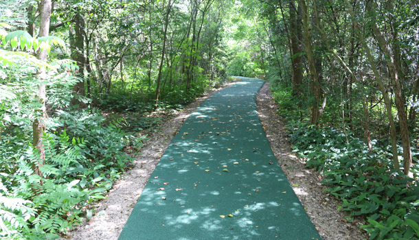 Rubber Trails Can be Customized in Color and Design