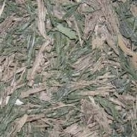 rubber-mulch-tree-well-green-brown-blend