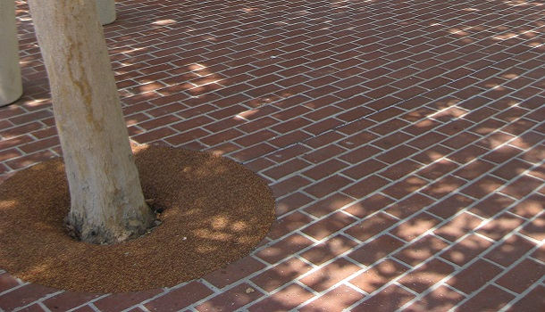 Rubberway Rubber Tree Wells Provide a Safe Transition from the Tree to the Sidewalk