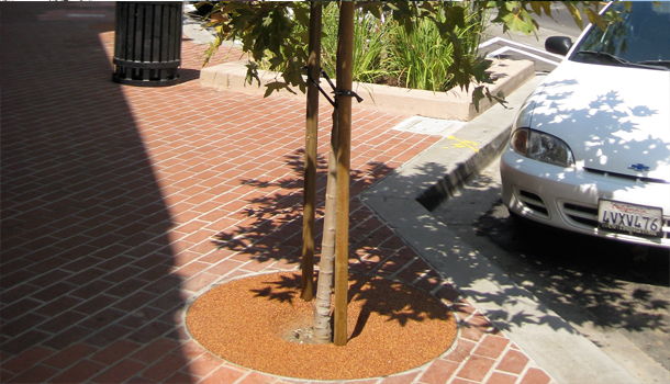 Rubberway Rubber Tree Wells Help Beautify Cities